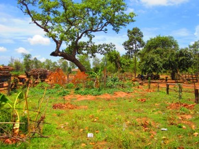 Katch Phakar Permaculture Education Center hosts groups from throughoutCambodia